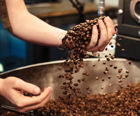 grano de cafe eboca