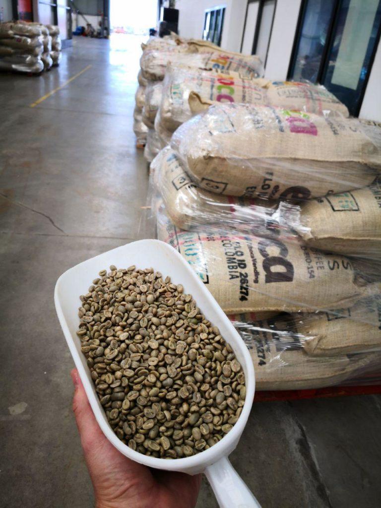 Nueva cosecha en eboca